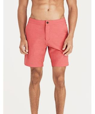 ALL DAY SHORTS SPICE