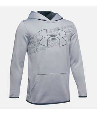 BOYS LOGO HOODIE 073 Wire