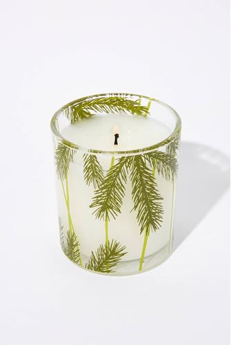 Frasier Fir Poured Candle 6.5 oz. CLEAR