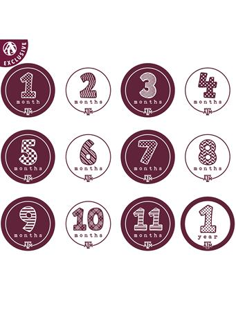 Texas A&M Lil' Ags First Year Monthly Stickers
