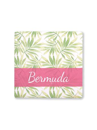 Bermuda Palm Tree Leaves Coaster {#color}