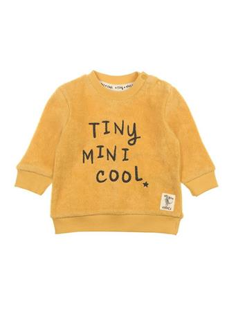 FEETJE - Sweater Tiny - Dino MUSTARD