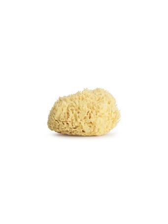 SEVIN LONDON - Gold Honeycomb Sponge - 5.5 NO COLOUR