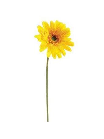 """21.5"""" Gerbera Daisy  YELLOW"""