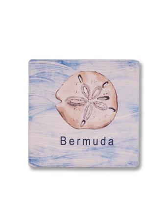 Bermuda Sand Dollar Coaster No-Color
