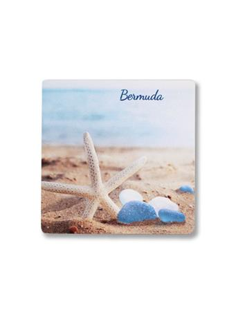 Bermuda Starfish Coaster