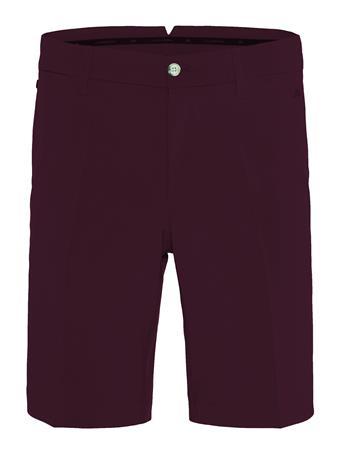 Eloy Micro Stretch Shorts - Regular
