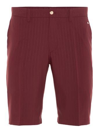 Somle Pin Stripe Shorts - Tapered