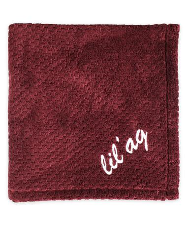 Texas A&M Lil` Ag Pineapple Stitch Baby Blanket - Folded Maroon
