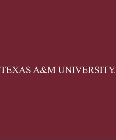Texas A&M University Decal White