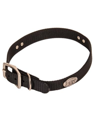 Concho Dog Collar - Black Black