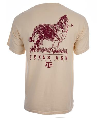 Texas A&M Aggies Reveille Etch T-Shirt - Back C1717 Ivory