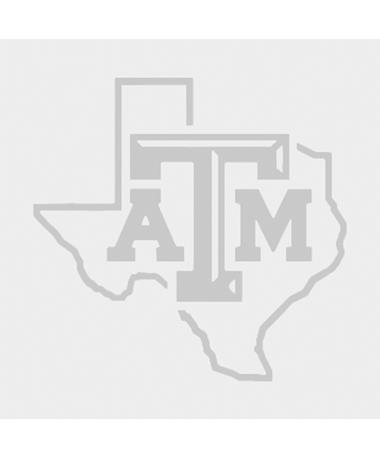 Texas A&M Lone Star Bevel Brushed Chrome 3