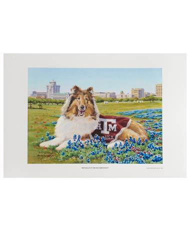 Texas A&M Benjamin Knox Reveille in Bluebonnets Print MULTI