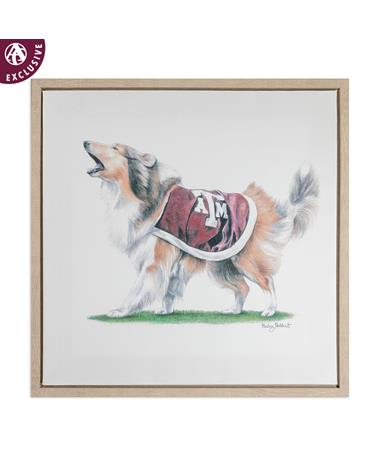 Texas A&M Reveille Framed Canvas