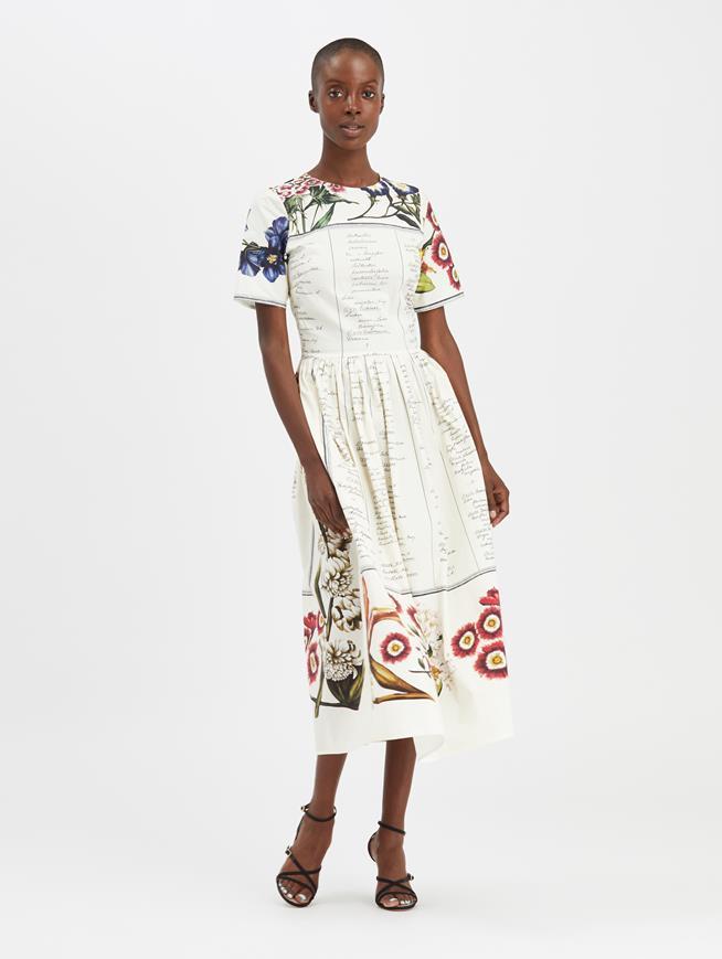Floral Calligraphy Dress Ecru Multi