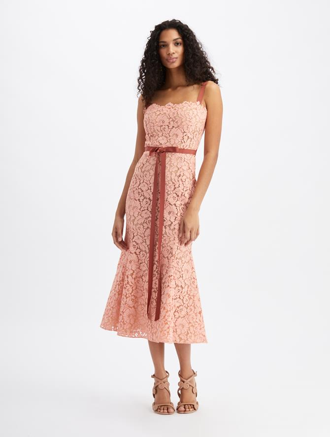 Lace Midi Day Dress Blush
