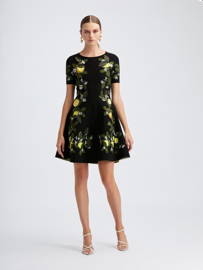 Citrus Jacquard Knit Dress